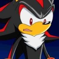Персонажи - The Hedgehog Shadow