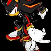 Персонажи The Hedgehog Shadow