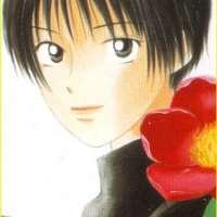 Персонажи Tsubaki Sakura